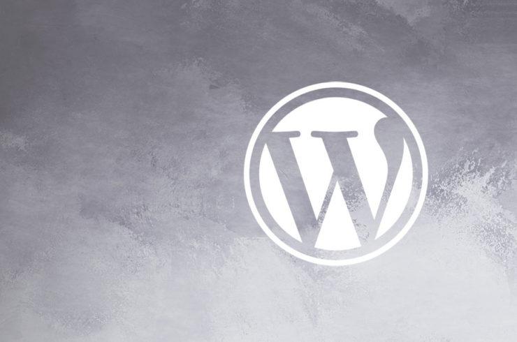 Wordpress Programmierung Tipps